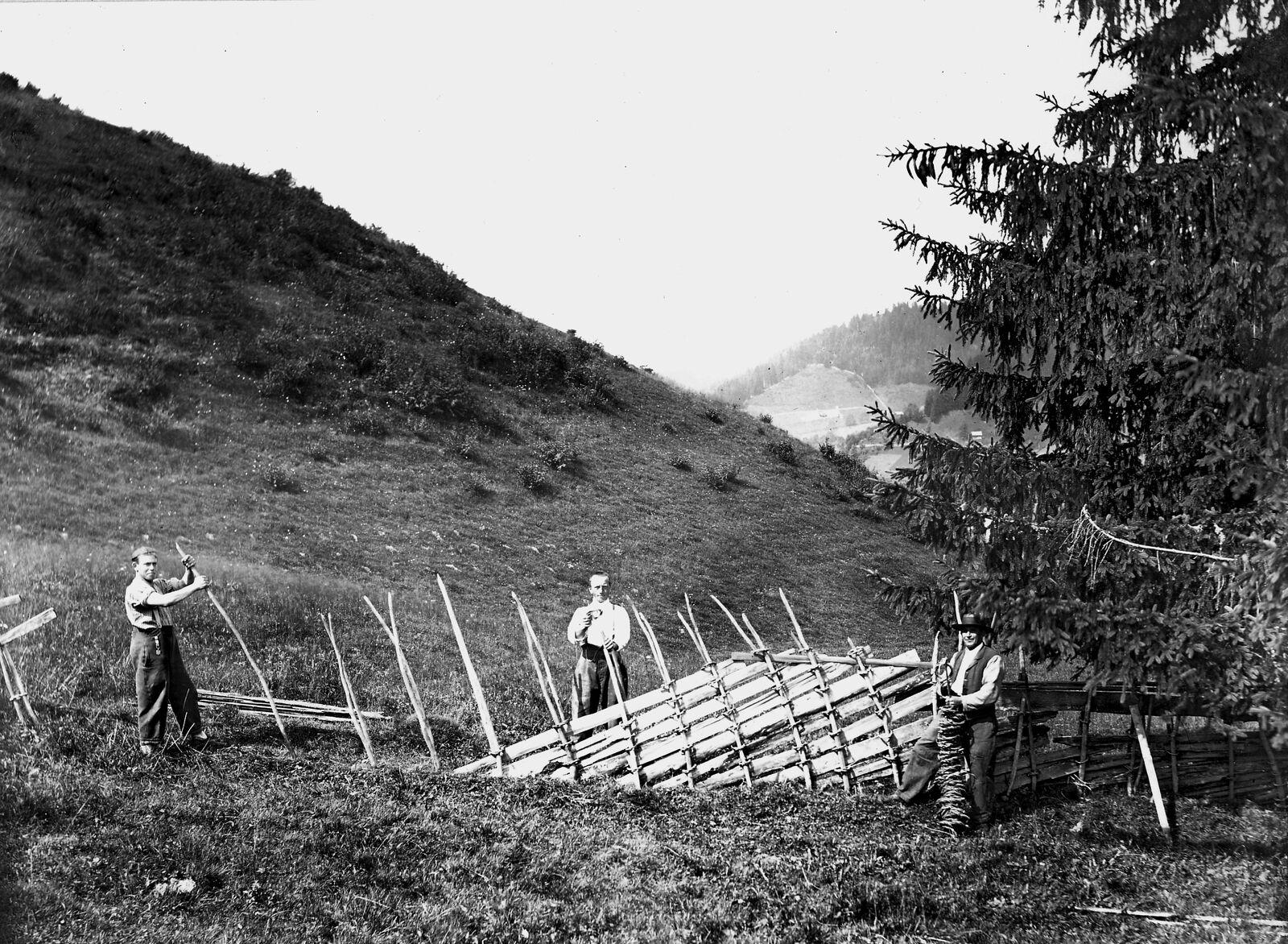 Die undatierte Aufnahme (vermutlich Ende 19. Jahrhundert) zeigt einen Ring- oder Schweiffelzaun in Teuffentahl bei Thun. Der Mann in der Mitte hält einen Ring aus geflochtenen Zweigen, der Mann rechts im Bild hält ein ganzes Bündel von Ringen. (Bild: Schweizerische Gesellschaft für Volkskunde, Basel, SGV_04P_02456)