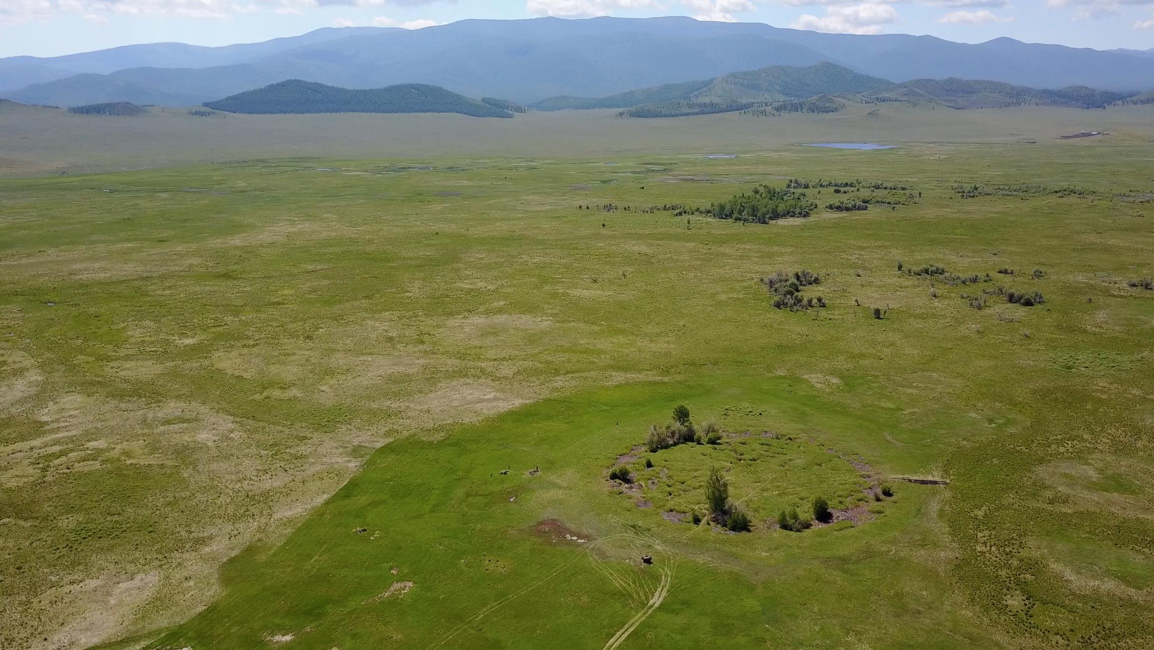 Blick auf den Grabhügel Tunnug 1 (Arschan 0). Während die übrigen Kurgane der Region auf einer Terrasse angelegt wurden, liegt Tunnug 1 (Arschan 0) tief in einem Sumpf.