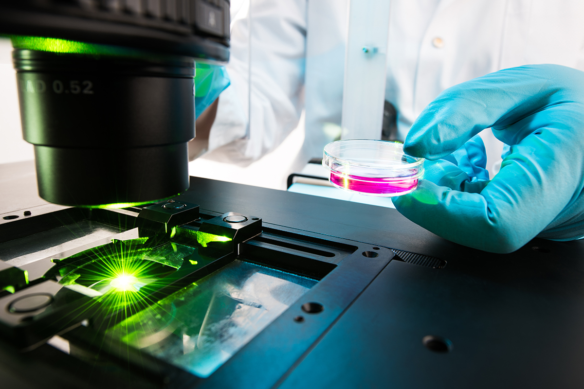 Analyse von DNA-Reparaturmechanismen in Zellen per Fluoreszenz-Mikroskopie. Bild: Conrad von Schubert