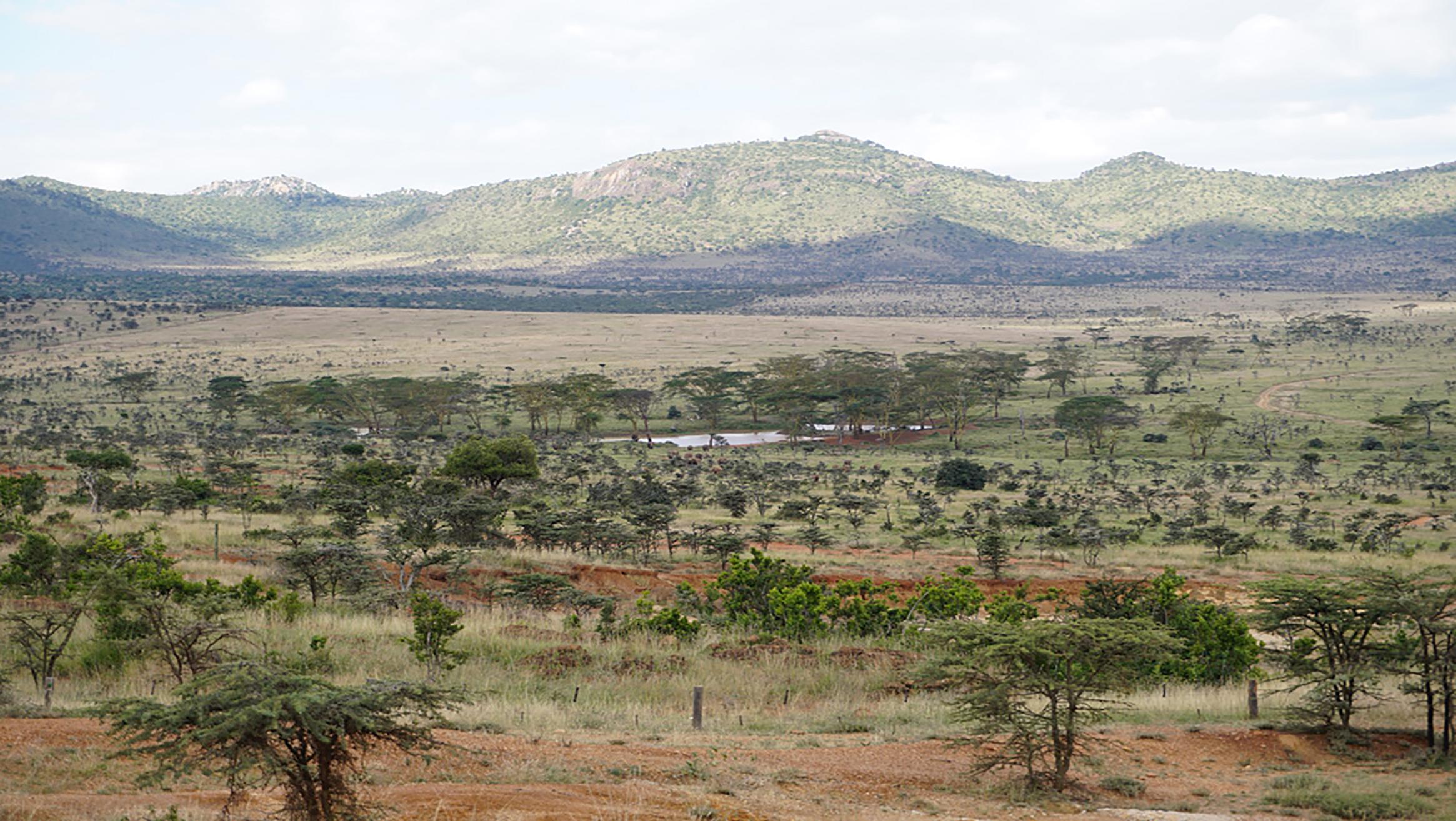 Naturschutzgebiet nördlich des Mount Kenia, eine der beiden Regionen des Pilotprojekts. Bild: Kasper Hurni, CDE