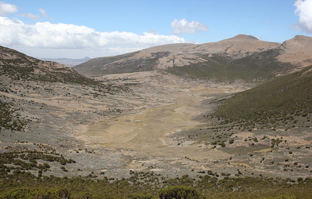 Das Wasama-Tal in den Bale Mountains mit heutiger Vegetation. Zu der Zeit der Middle Stone Age-Jäger-Sammler versperrte ein Talgletscher den Zugang zum zentralen Plateau. Dennoch gewannen die prähistorischen Menschen (auf 4'240 m: dem Berggrat im Zentrum der Abbildung) das Obsidian zur Herstellung ihrer Werkzeuge. Bild: Götz Ossendorf