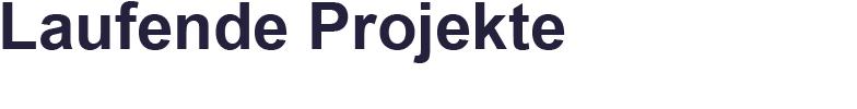 Laufende Projekte