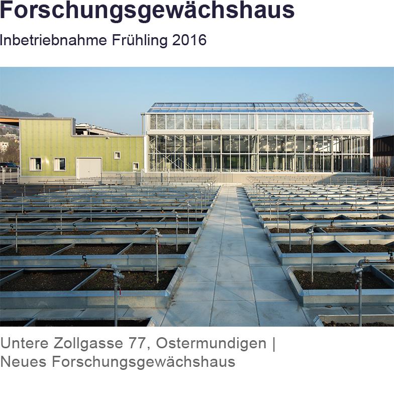 Forschungsgewächshaus Ostermundigen